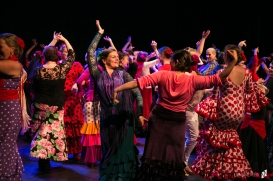 Flamenco voorstelling Lene_12 juni 2016-296-2_Lien Wevers_Lage resolutie (social media, web)