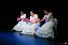 Flamenco voorstelling Lene_12 juni 2016-470_Lien Wevers_Lage resolutie (social media, web)