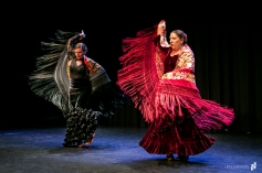 Flamenco voorstelling Lene_12 juni 2016-697_Lien Wevers_Lage resolutie (social media, web)