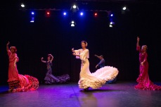 Flamenco voorstelling_juni 2018_Lien Wevers photographer_lage resolutie (web)_107