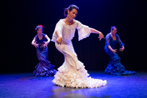 Flamenco voorstelling_juni 2018_Lien Wevers photographer_lage resolutie (web)_110