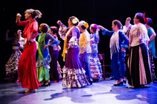 Flamenco voorstelling_juni 2018_Lien Wevers photographer_lage resolutie (web)_156