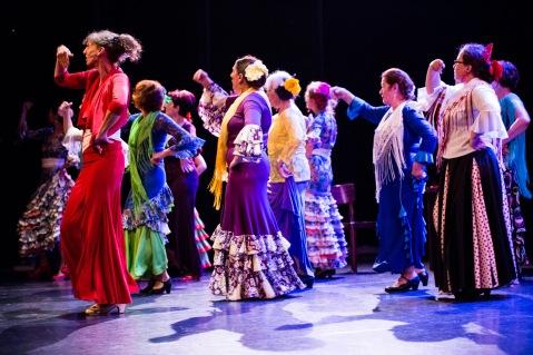 Flamenco voorstelling_juni 2018_Lien Wevers photographer_lage resolutie (web)_156