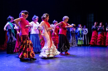 Flamenco voorstelling_juni 2018_Lien Wevers photographer_lage resolutie (web)_42