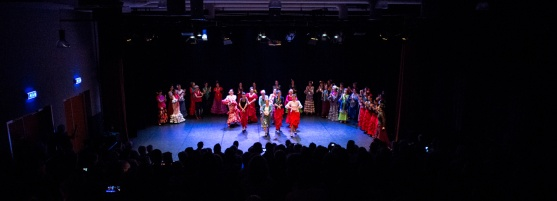 Flamenco voorstelling_juni 2018_Lien Wevers photographer_lage resolutie (web)_44