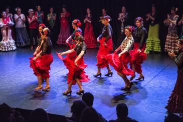 Flamenco voorstelling_juni 2018_Lien Wevers photographer_lage resolutie (web)_47