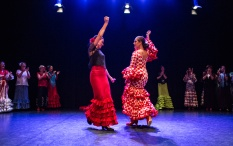 Flamenco voorstelling_juni 2018_Lien Wevers photographer_lage resolutie (web)_48