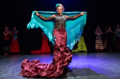 Flamenco voorstelling_juni 2018_Lien Wevers photographer_lage resolutie (web)_51