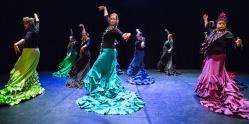 Flamenco voorstelling_juni 2018_Lien Wevers photographer_lage resolutie (web)_58