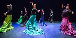 Flamenco voorstelling_juni 2018_Lien Wevers photographer_lage resolutie (web)_58