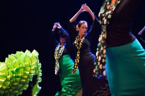 Flamenco voorstelling_juni 2018_Lien Wevers photographer_lage resolutie (web)_60