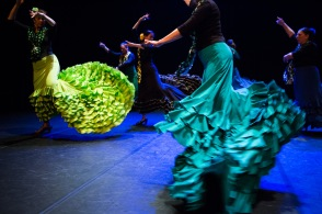 Flamenco voorstelling_juni 2018_Lien Wevers photographer_lage resolutie (web)_61