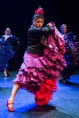 Flamenco voorstelling_juni 2018_Lien Wevers photographer_lage resolutie (web)_63