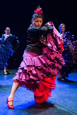 Flamenco voorstelling_juni 2018_Lien Wevers photographer_lage resolutie (web)_63