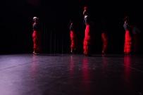 Flamenco voorstelling_juni 2018_Lien Wevers photographer_lage resolutie (web)_64