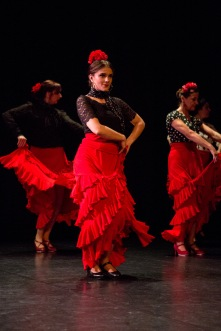 Flamenco voorstelling_juni 2018_Lien Wevers photographer_lage resolutie (web)_65