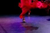 Flamenco voorstelling_juni 2018_Lien Wevers photographer_lage resolutie (web)_70