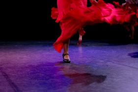 Flamenco voorstelling_juni 2018_Lien Wevers photographer_lage resolutie (web)_70