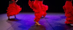 Flamenco voorstelling_juni 2018_Lien Wevers photographer_lage resolutie (web)_71