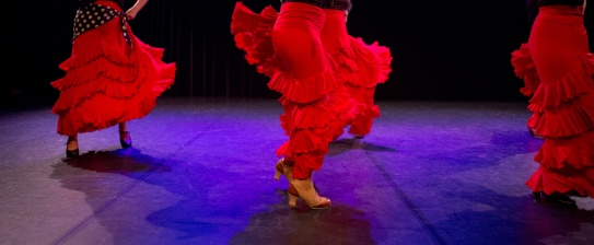 Flamenco voorstelling_juni 2018_Lien Wevers photographer_lage resolutie (web)_71
