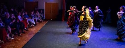 Flamenco voorstelling_juni 2018_Lien Wevers photographer_lage resolutie (web)_72