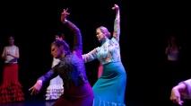 Flamenco voorstelling_juni 2018_Lien Wevers photographer_lage resolutie (web)_76