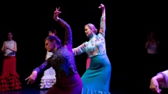 Flamenco voorstelling_juni 2018_Lien Wevers photographer_lage resolutie (web)_76