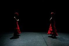 Flamenco voorstelling_juni 2018_Lien Wevers photographer_lage resolutie (web)_78