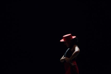 Flamenco voorstelling_juni 2018_Lien Wevers photographer_lage resolutie (web)_79