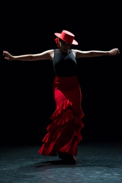 Flamenco voorstelling_juni 2018_Lien Wevers photographer_lage resolutie (web)_81