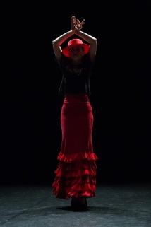 Flamenco voorstelling_juni 2018_Lien Wevers photographer_lage resolutie (web)_82