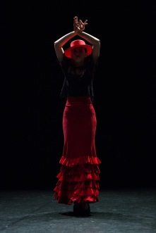 Flamenco voorstelling_juni 2018_Lien Wevers photographer_lage resolutie (web)_82