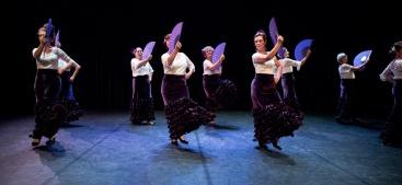 Flamenco voorstelling_juni 2018_Lien Wevers photographer_lage resolutie (web)_94