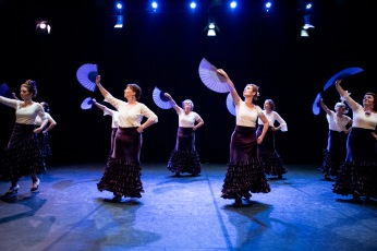 Flamenco voorstelling_juni 2018_Lien Wevers photographer_lage resolutie (web)_96