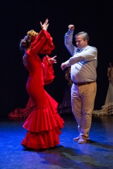 Flamenco voorstelling_juni 2018_Lien Wevers photographer_lage resolutie (web)_99