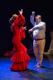 Flamenco voorstelling_juni 2018_Lien Wevers photographer_lage resolutie (web)_99